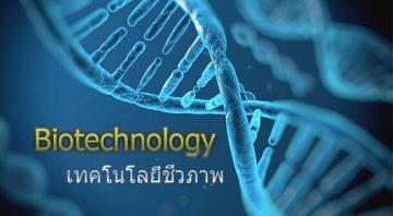 เทคโนโลยีชีวภาพ